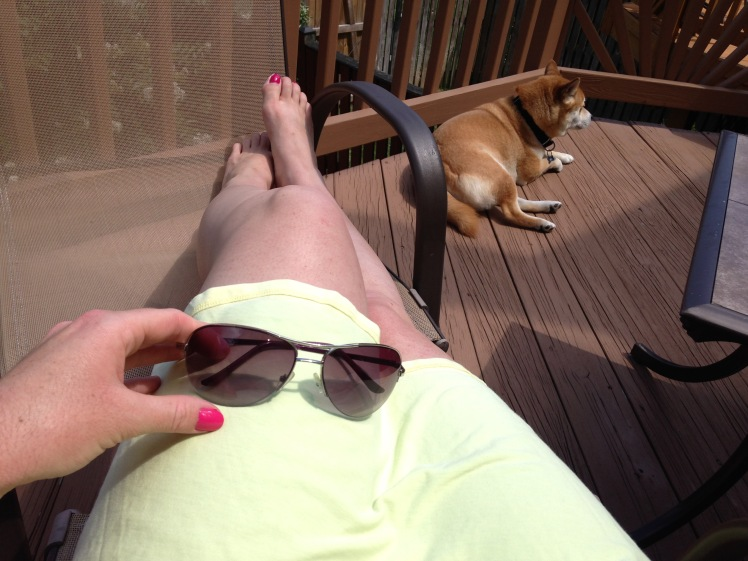 Sunny Shiba Summer 2015