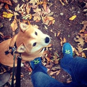Birthday Hike Fall 2015