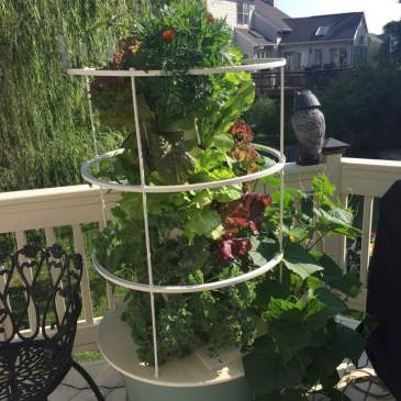 Tower Garden – Have A Little Faith in We