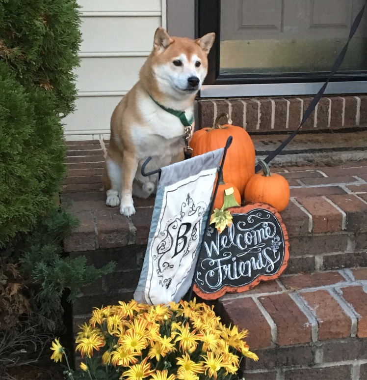 Happy Fall from the Bessette October 2016