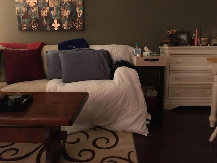 Dan's corner couch spot December 2016